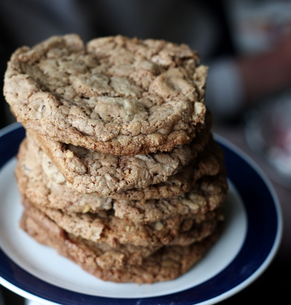 peanut butter chocolate cookie