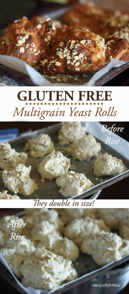 Gluten free super fluffy multigrain yeast rolls!