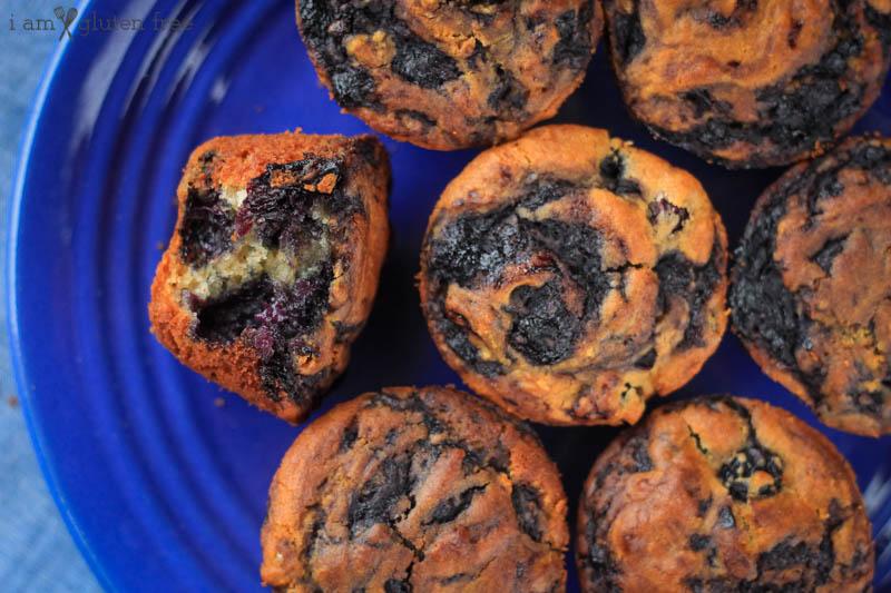 Gluten Free Blueberry Swirl Muffins (12 of 19)