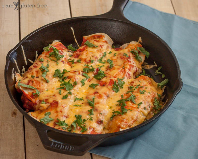 gluten free enchiladas with corn tortillas and chicken